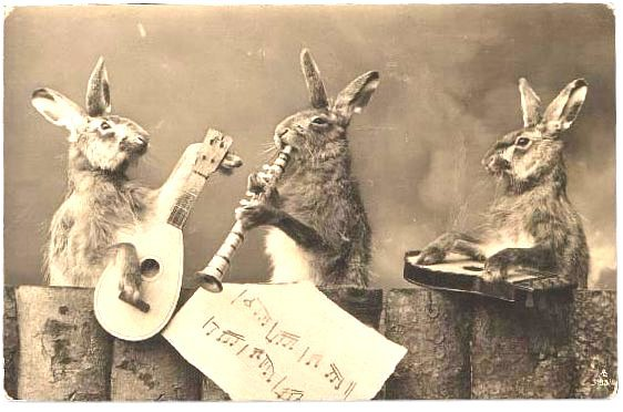 rabbit band