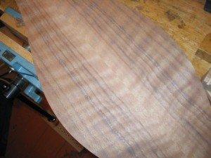 steamed walnut back