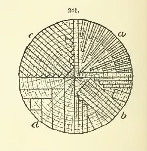 Typical sawing pattern