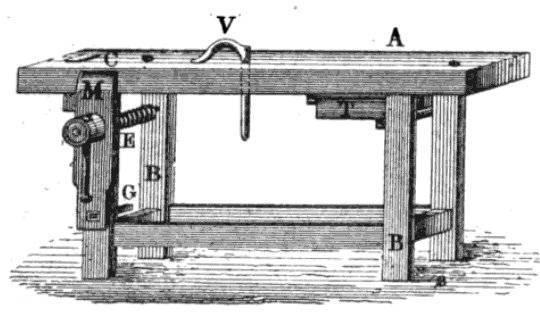 Figure V - a holdfast