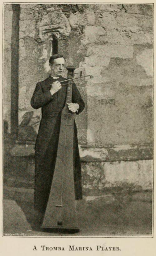 A Tromba Marina Player